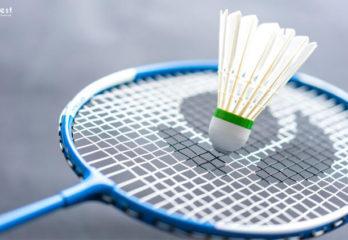 How To Choose Badminton Racket?