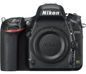 best dslr camera for beginners 2021